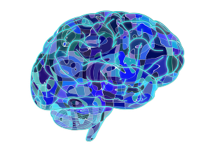 Phosphatidylserine and Sleep - What's the Connection - Glymphatic System in the Brain Abstract